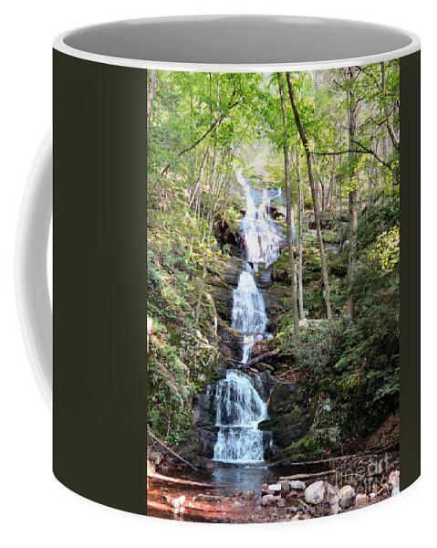 Stream Coffee Mug featuring the photograph Falls Of No End by Art Dingo