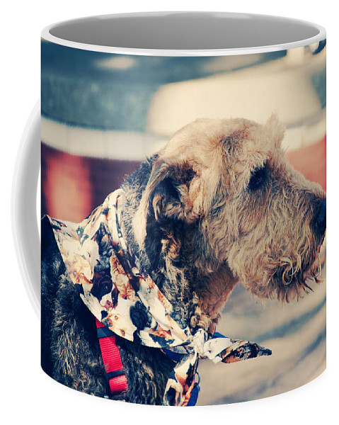 Dog Coffee Mug featuring the photograph Airedale On The Fashion Runway by Toni Hopper