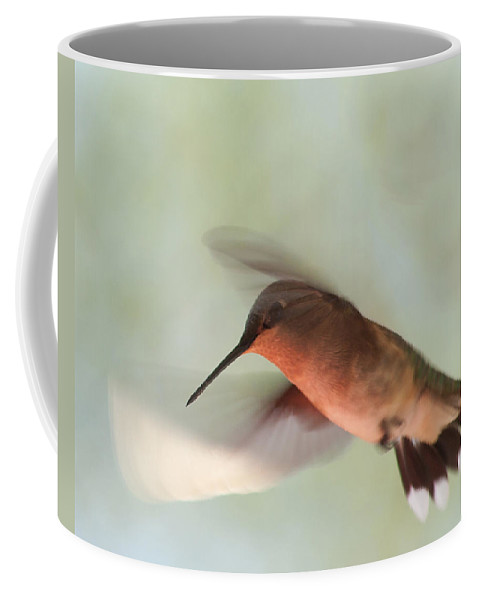 Hummingbird Coffee Mug featuring the photograph Female Ruby-throated Hummingbird by Jeff Galbraith