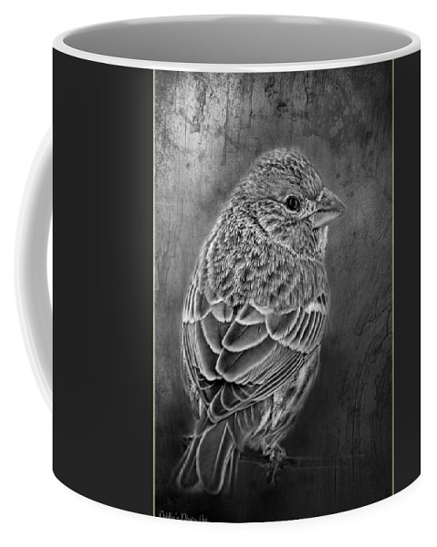 Nature Coffee Mug featuring the photograph Finch Black And White by Debbie Portwood