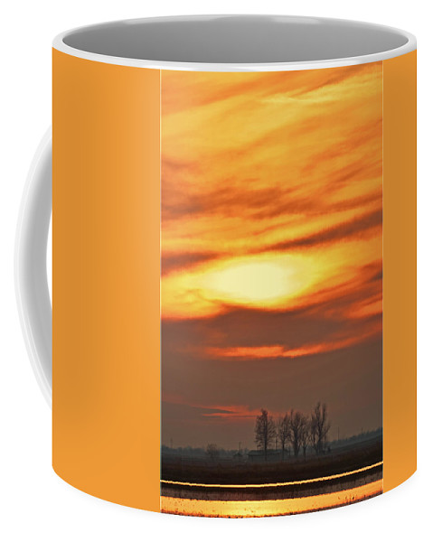 Nature Coffee Mug featuring the photograph Fire In The Sky by Debbie Portwood