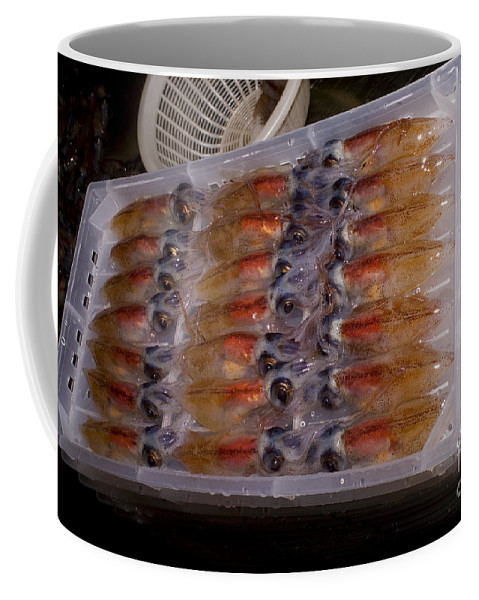 Japan Fishery Coffee Mug featuring the photograph Firefly Squid Processing by Dante Fenolio