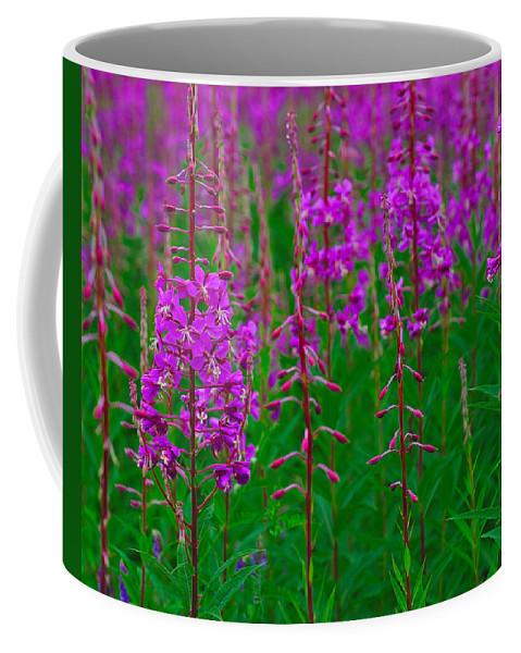 Epilobium Angustifolium Coffee Mug featuring the photograph Fireweed by Tony Beck