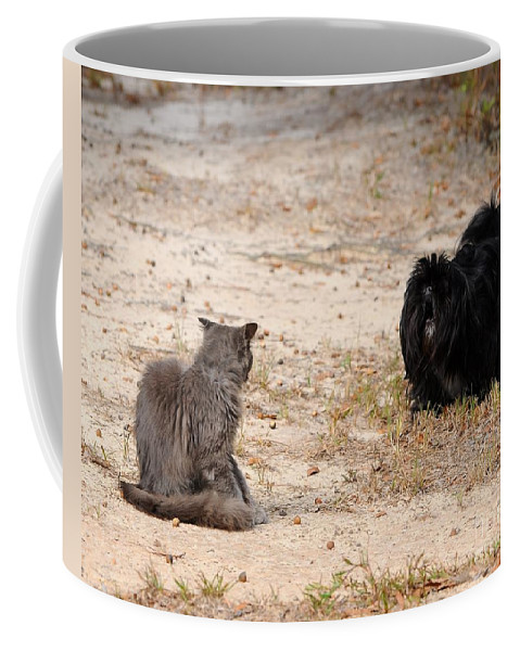 Pet Coffee Mug featuring the photograph First Impressions by Al Powell Photography USA