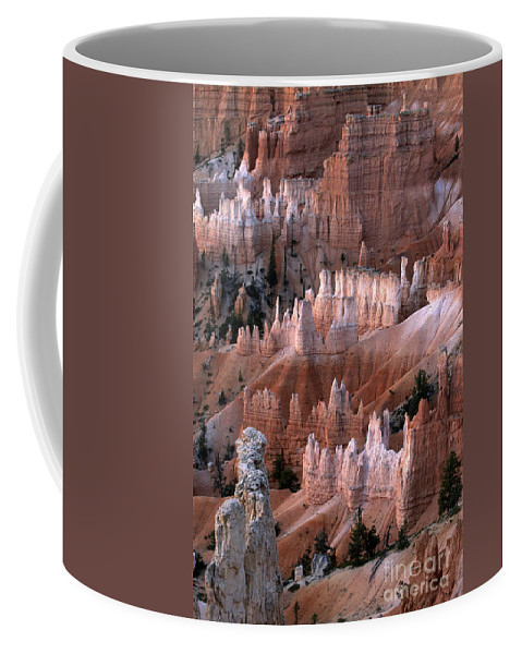 Sandra Bronstein Coffee Mug featuring the photograph First Light In Bryce Canyon by Sandra Bronstein