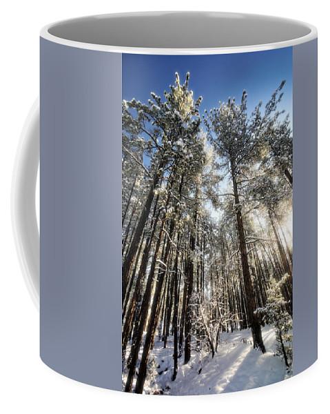 Snow Coffee Mug featuring the photograph First Snow by Saija Lehtonen