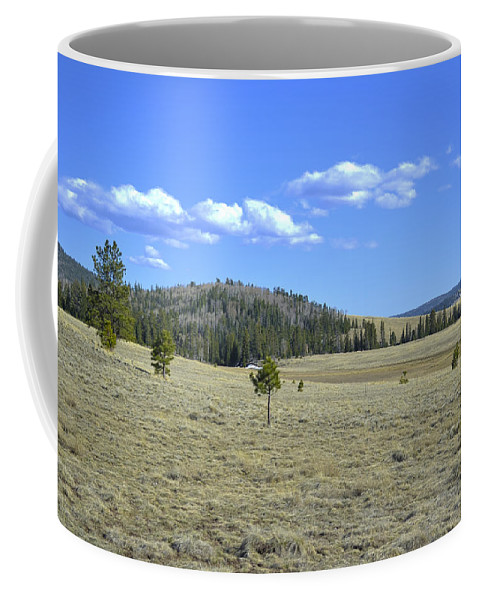 Fine Art Coffee Mug featuring the photograph Fish Creek Valley II by Donna Greene