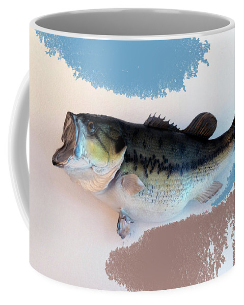Animals Coffee Mug featuring the photograph Fish Mount Set 07 B by Thomas Woolworth