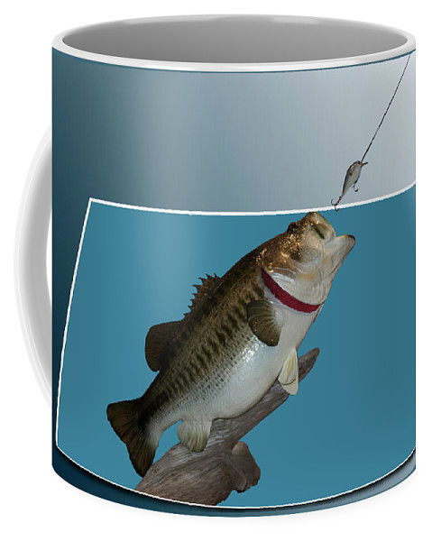 Animals Coffee Mug featuring the photograph Fish Mount Set 13 D by Thomas Woolworth