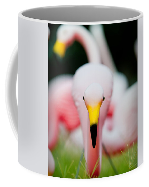 Austin Coffee Mug featuring the photograph Flamingo 2 by Sean Wray