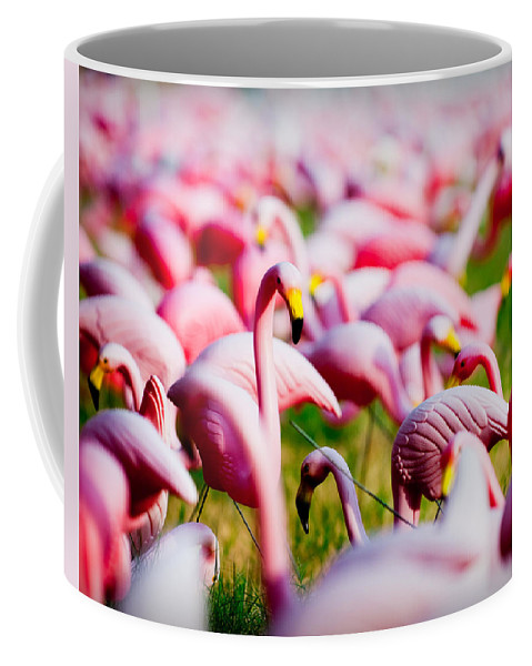 Austin Coffee Mug featuring the photograph Flamingo 7 by Sean Wray