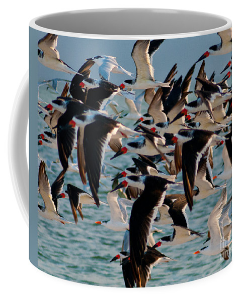 Terns Coffee Mug featuring the photograph Flock Of Terns by Stephen Whalen