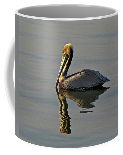 Nature Coffee Mug featuring the photograph Florida Pelican by Peg Urban