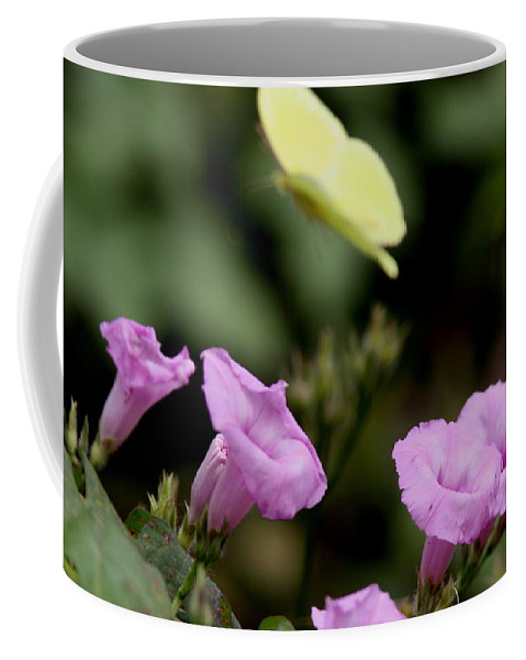 Flowers Coffee Mug featuring the photograph Flowers And Butterfly by Travis Truelove