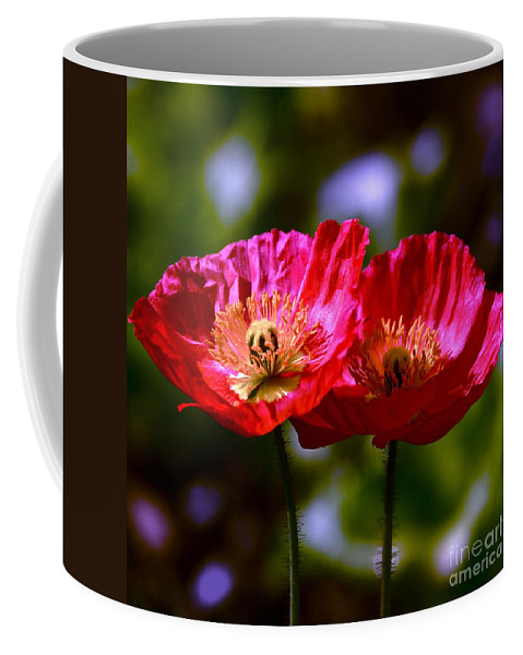 Red Poppies Coffee Mug featuring the photograph Flowers Are For Fun by Byron Varvarigos