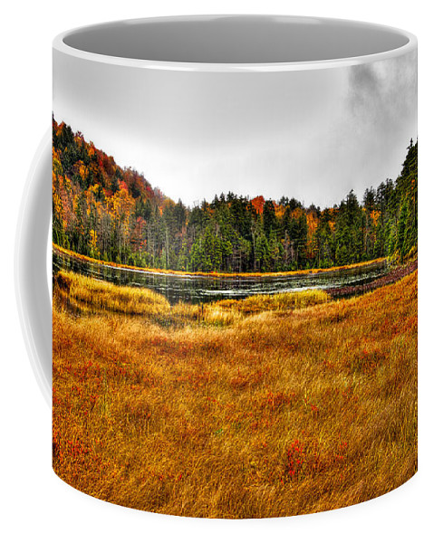 Adirondack's Coffee Mug featuring the photograph Fly Pond On Rondaxe Road by David Patterson