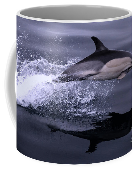 Dolphin Coffee Mug featuring the photograph Flying Porpoise by Rob Hawkins