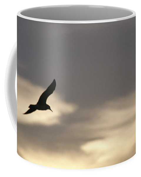 Animal Behavior Coffee Mug featuring the photograph Flying Seagull In Silhouette by Raul Touzon