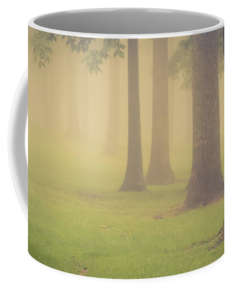 Landscape Coffee Mug featuring the photograph Foggy Trees Pano by Joye Ardyn Durham