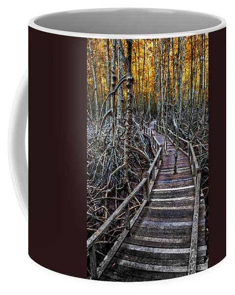 Mangrove Forest Coffee Mug featuring the photograph Footpath In Mangrove Forest by Adrian Evans