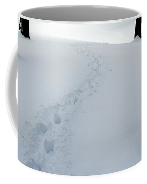 Snow Coffee Mug featuring the photograph Footprint Trail Through The Snow In The Woods by Randall Nyhof