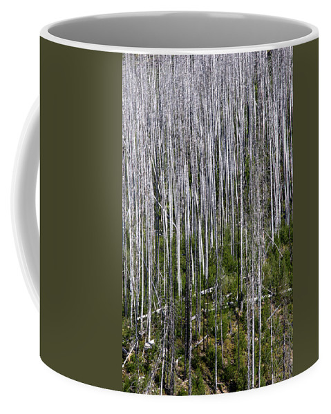 Forest Coffee Mug featuring the photograph Forest Fire Sticks-2 by Paul Cannon