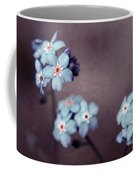 Brown Coffee Mug featuring the photograph Forget Me Not 01 - S05dt01 by Variance Collections