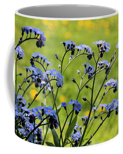 Forget-me-not Coffee Mug featuring the photograph Forget-me-nots by Doris Potter