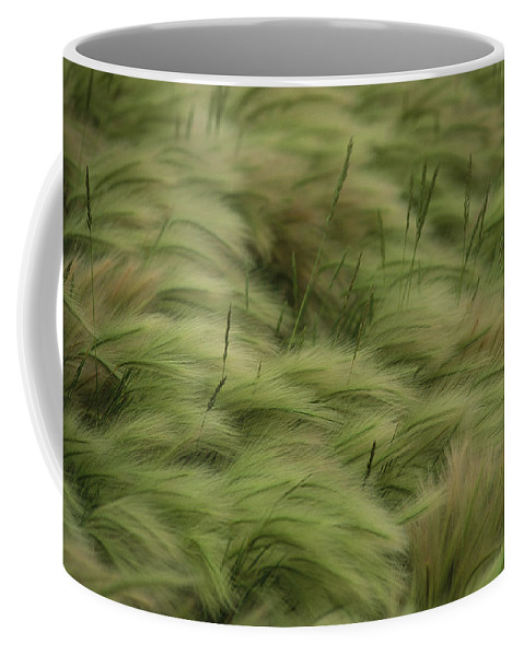 Day Coffee Mug featuring the photograph Foxtail Barley And Western Wheatgrass by Annie Griffiths