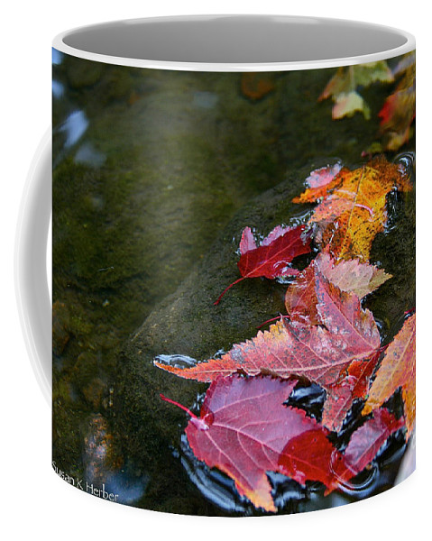 Outdoors Coffee Mug featuring the photograph Free Flowing by Susan Herber