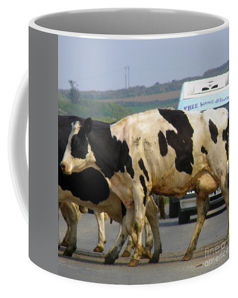 Cows Coffee Mug featuring the photograph Free Home Delivery by Lainie Wrightson