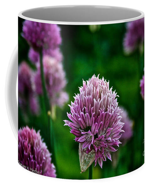 Plant Coffee Mug featuring the photograph Fresh Chives by Susan Herber