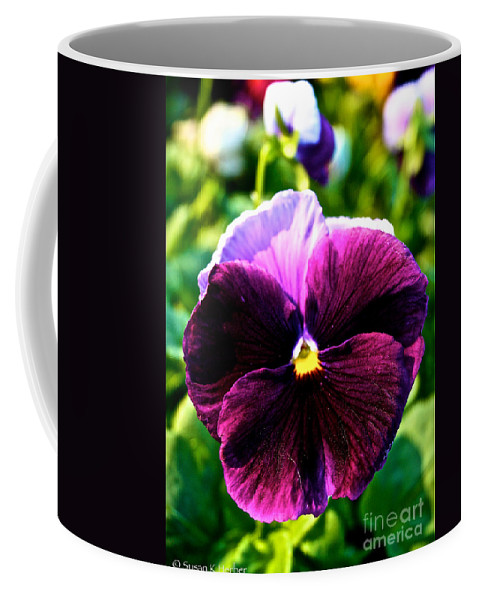 Outdoors Coffee Mug featuring the photograph Fresh Face Pansy by Susan Herber