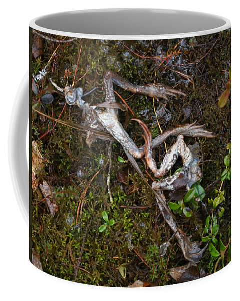 Lehtokukka Coffee Mug featuring the photograph Frogs After The Fiesta by Jouko Lehto