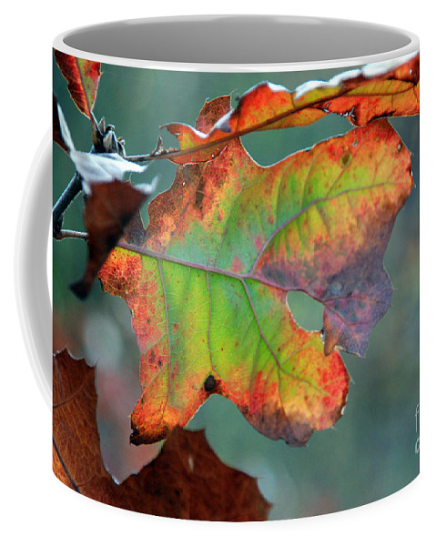 Red Coffee Mug featuring the photograph From Greeen To Rust by Optical Playground By MP Ray
