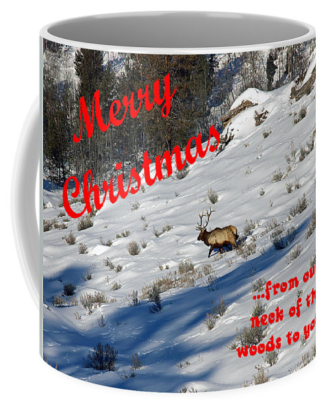 Christmas Coffee Mug featuring the photograph From Our Neck Of The Woods 6 by DeeLon Merritt