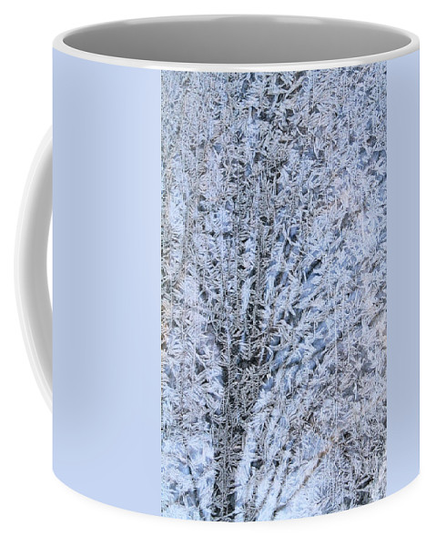 Frost Coffee Mug featuring the photograph Frosted Tree by Doris Potter