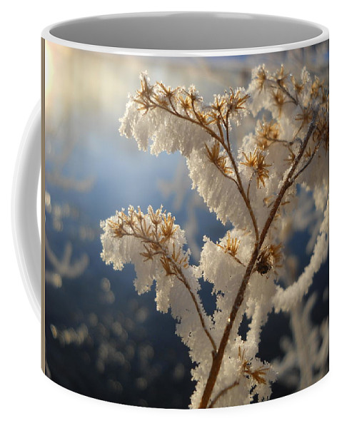 Frost Coffee Mug featuring the photograph Frosty Dry Wood Aster by Kent Lorentzen