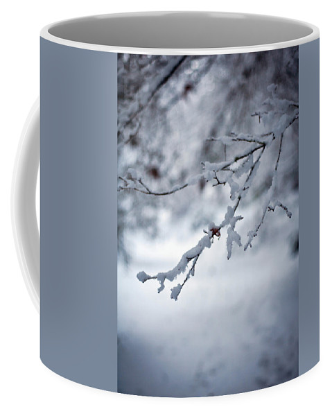 Winter Coffee Mug featuring the photograph Frozen Path by Mike Reid