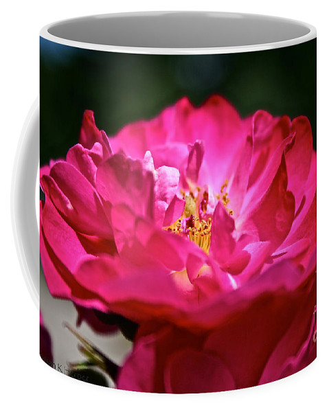 Flower Coffee Mug featuring the photograph Fully Open by Susan Herber