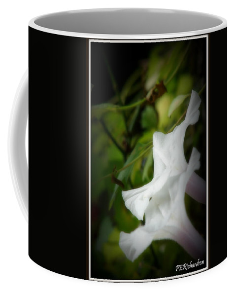 Morning Glories Coffee Mug featuring the photograph Gaily by Priscilla Richardson