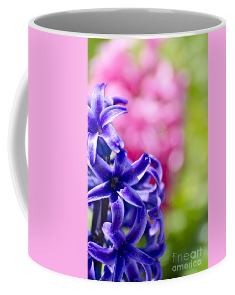 Hyacinth Coffee Mug featuring the photograph Garden Color Splash by Jim And Emily Bush