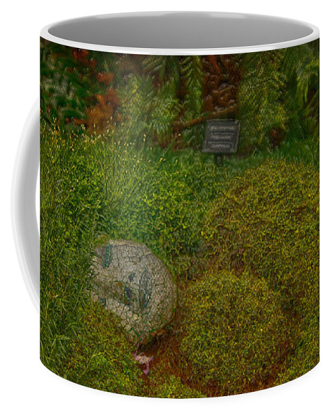 Jerry Cordeiro Framed Prints Framed Prints Photographs Photographs Photographs Coffee Mug featuring the photograph Garden Of Dreams by The Artist Project