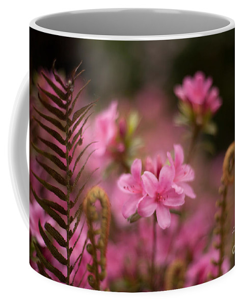 Rhodies Coffee Mug featuring the photograph Garden Of Friends by Mike Reid