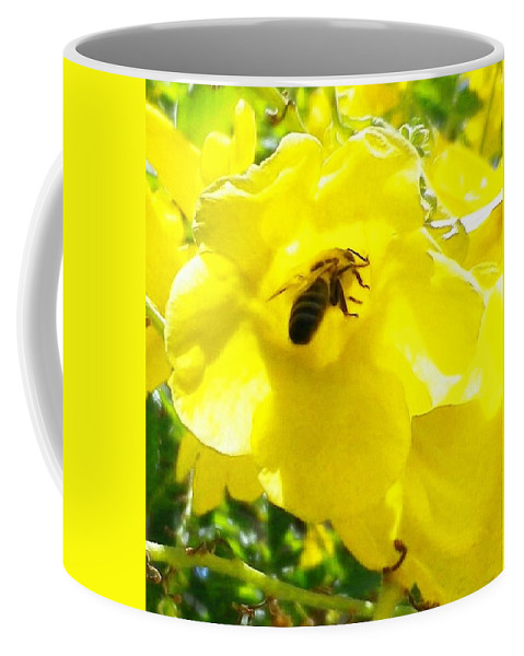 Yellow Bell Flower Coffee Mug featuring the photograph Getting The Goods by Jonathan Barnes