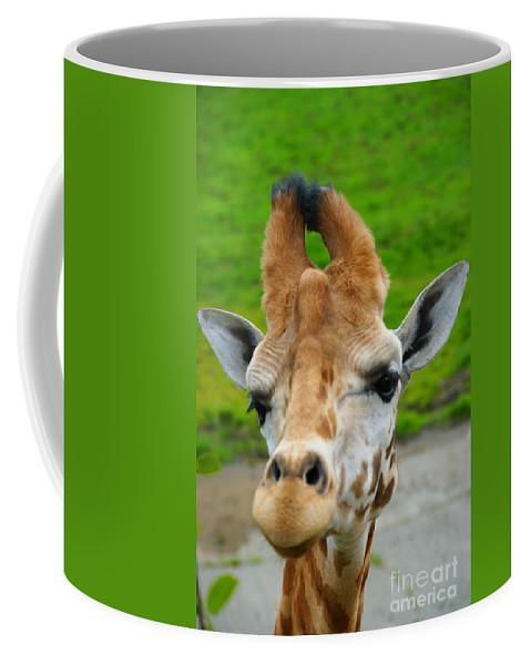 Giraffes Coffee Mug featuring the photograph Giraffe In The Park by Randy Harris