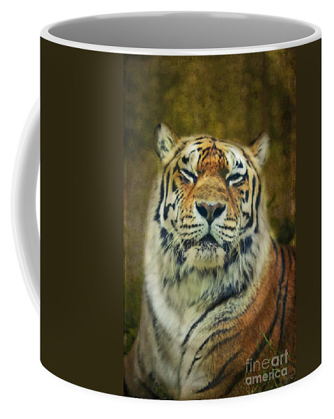 Tiger Coffee Mug featuring the photograph Give Me Your Tender Look by Aimelle