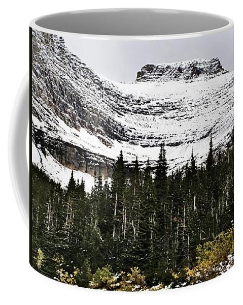 Glacier Coffee Mug featuring the photograph Glacier Park Bowlrock by Susan Kinney