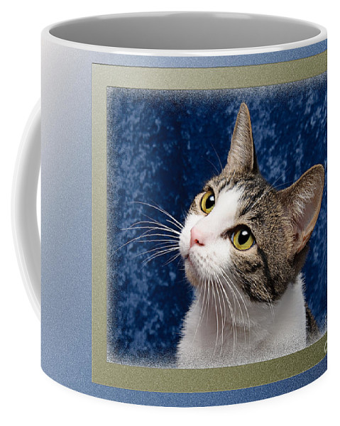 Fine Art Cat Coffee Mug featuring the photograph Glamour Girl by Andee Design