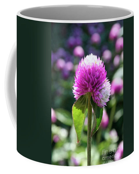 Outdoors Coffee Mug featuring the photograph Glowing Globe Amaranth by Susan Herber